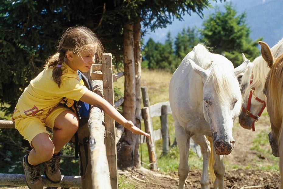 Mädchen_Pferde